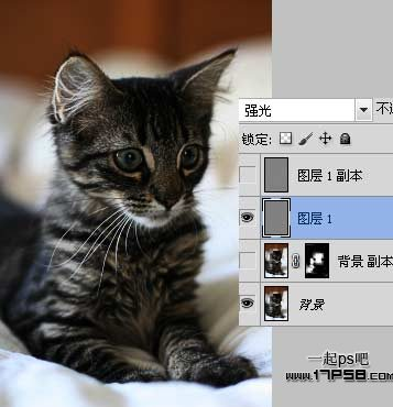 photoshop巧用滤镜工具_52z.com
