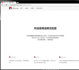 洁癖浏览器_洁癖浏览器(JPBrowser)V44.0.2403.157.1免费版下载