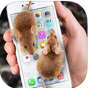 mouse on scary joke V1.0 安卓版