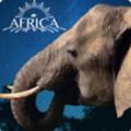 3D大象养成V1.2 汉化版
