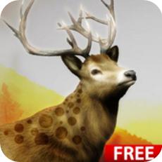 狩猎挑战V1.0 破解版