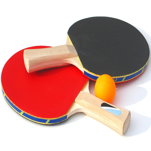 乒乓球联赛3DV2.5.8 内购破解