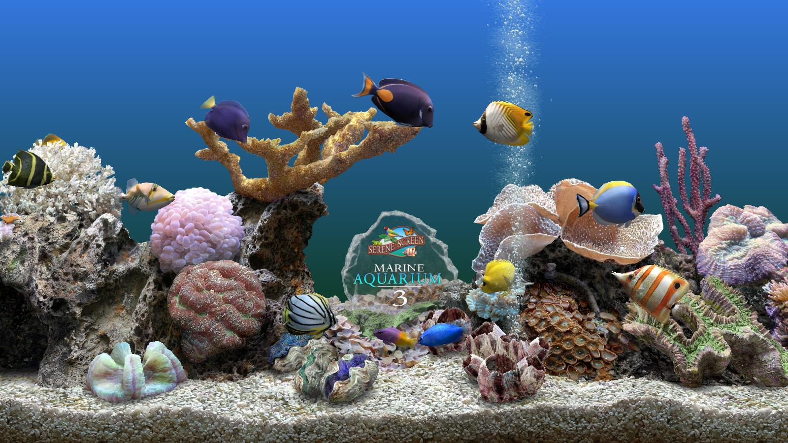 壁纸 海底 海底世界 海洋馆 水族馆 桌面 1600_900