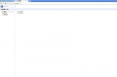 谷歌浏览器大全