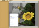 WoolImagerV1.1 Mac版