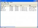 InjectedDLL(监视可疑的 DLL)V1.00汉化版