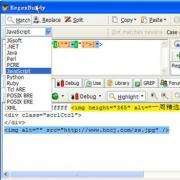 RegexBuddy(正则表达式测试工具) V4.0.3 官方最新版