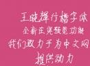 王晓辉行楷字体
