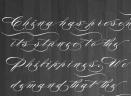 Burgues Script字体