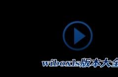 wibox播放器软件专题
