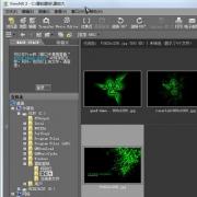 尼康影像浏览编辑软件(Nikon ViewNX2) V2.8.3 官方中文版