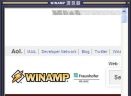 精选的100个WinampSkin