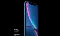 苹果iphone xr屏幕尺寸多大 iphone xr屏占比是多少