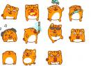 小咸猫qq表情包图片