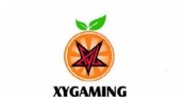 绝地求生pcpi s2参赛战队xyG资料介绍