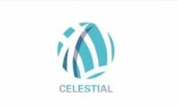 守望先锋Celestial队资料