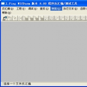 w32dasm(反汇编工具) v9.0白金中文绿色版