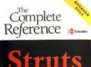 struts程序员查询辞典(jsp教程)pds格式