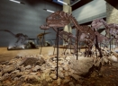 恐龙化石猎人序章steam正版