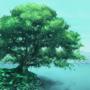 树 V1.3 安卓版