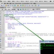 万能代码翻译器CodeGod V1.0 绿色版
