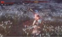 《只狼:影逝二度》最高难度苇名一心打法攻略