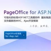 PageOffice for ASP.NET V2.0.6.3 官方版