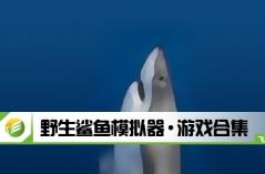 野生鲨鱼模拟器·游戏合集