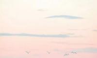 碧水蓝天旺财的海边风景头像 微信海边风景头像带好运