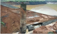 印度螃蟹泛滥致大坝溃堤是怎么回事 印度螃蟹泛滥致大坝溃堤是什么情况