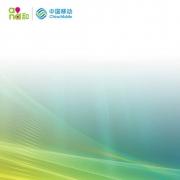 2015中国移动年终工作总结模板 绿色版