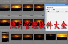 照片管理软件大全