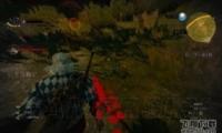巫师3公主落难记任务图文攻略