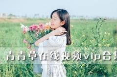 青青草在线视频vip合集