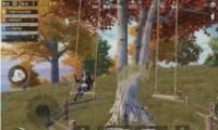 《和平精英》枫叶林位置坐标一览