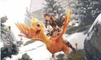 创造与魔法咣鸡获取攻略