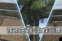 筏木生存·游戏合集