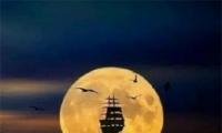 中秋节圆月图片高清无水印 2019最美中秋节月亮图片