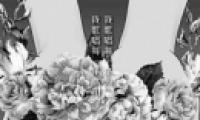 王菲《我和我的祖国》歌曲在线试听及歌词MV视频