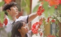 《偶然发现的一天》韩剧中出现的花是什么花?