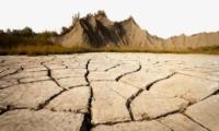 安徽51个市县遭遇重度干旱是怎么回事?