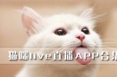 猫咪live直播APP合集