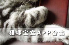 猫咪宝盒APP合集