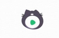 龙猫影视网APP合集