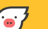 飞猪和铁路12306抢票区别对比实用评测
