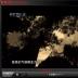 中央电视台直播软件
