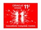 Oracle 11g数据库(附安装图解)V11.2.0.1.0 官方标准版