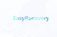 EasyRecovery软件大全