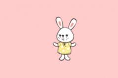 兔儿直播APP合集