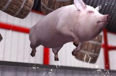小猪模拟器・游戏合集
